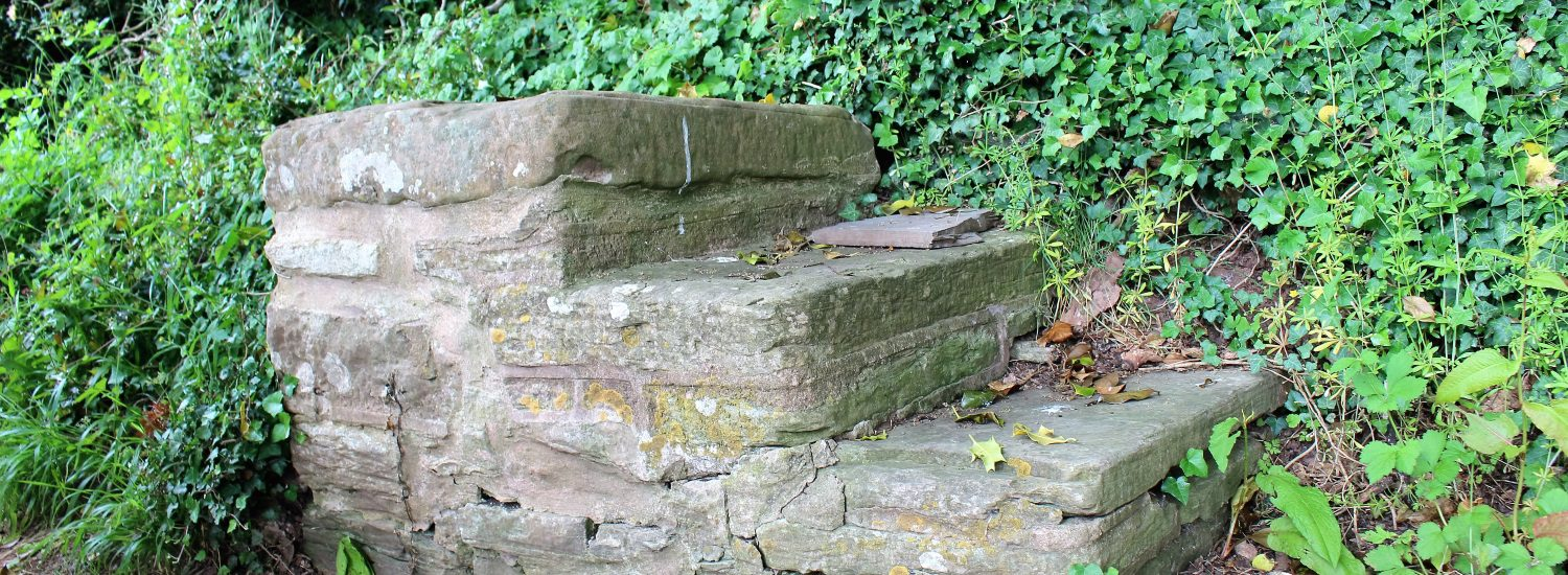 Stone steps once used by people getting into carriages