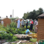 People on the allotments