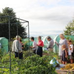 A group of people on the allotments