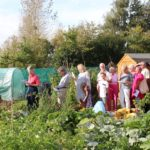 People standing in the allotments in the sunshine