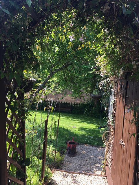 View of a lawn through a gate