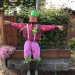 Scarecrow dressed in a pink shirt and trousers and wearing wellies