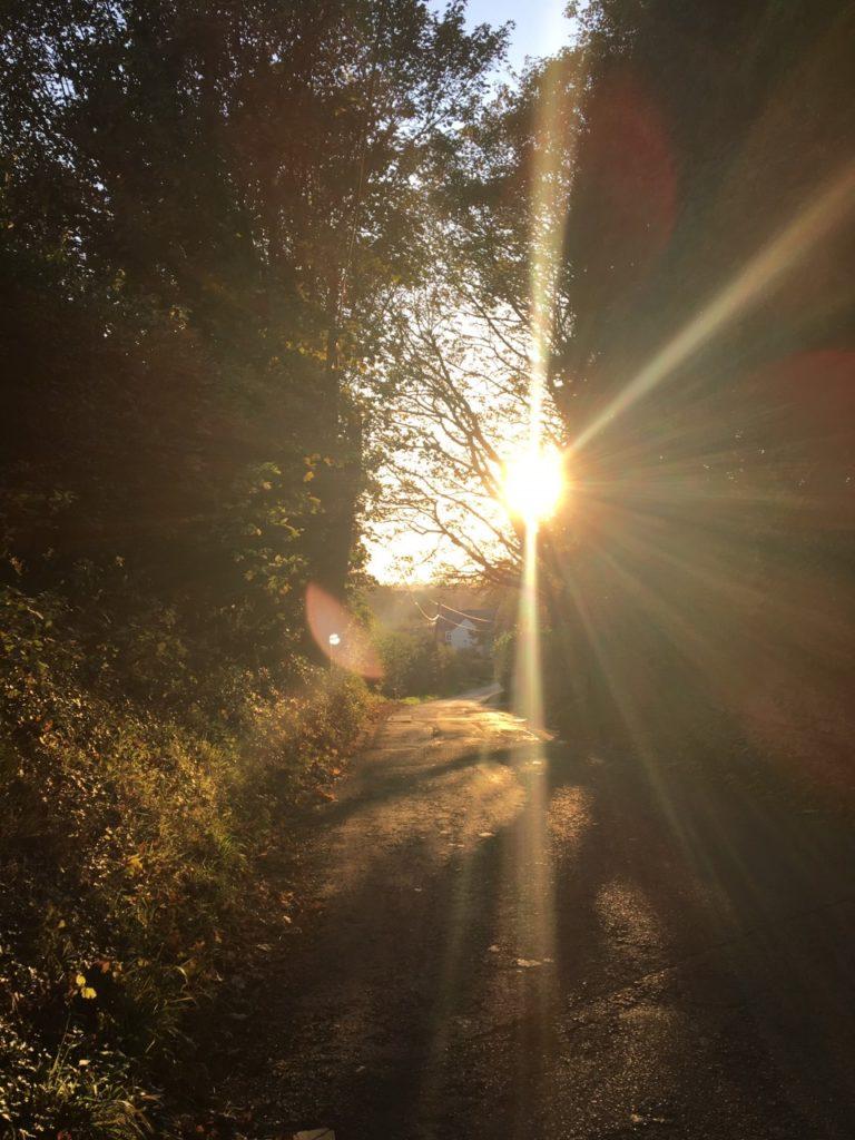 Sun shining in a lane