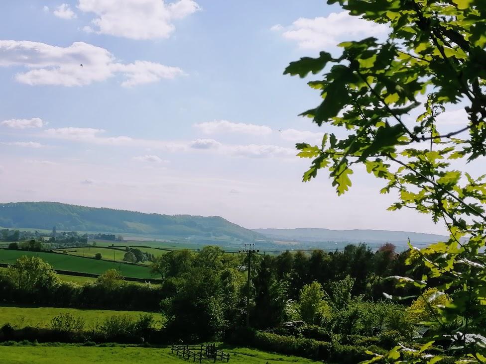 View across fields towards Penyard