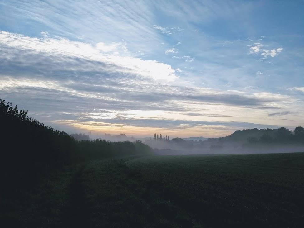Mist above fields
